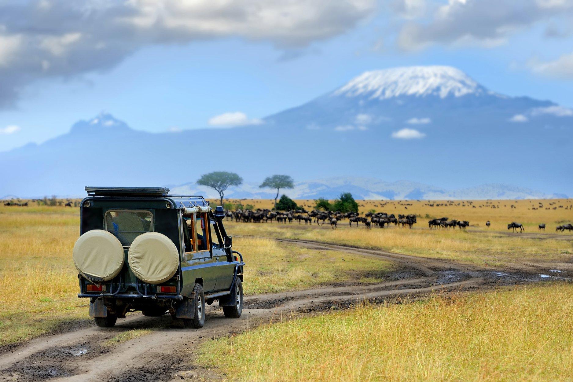 Safari v Tanzánii a relax na Zanzibare
